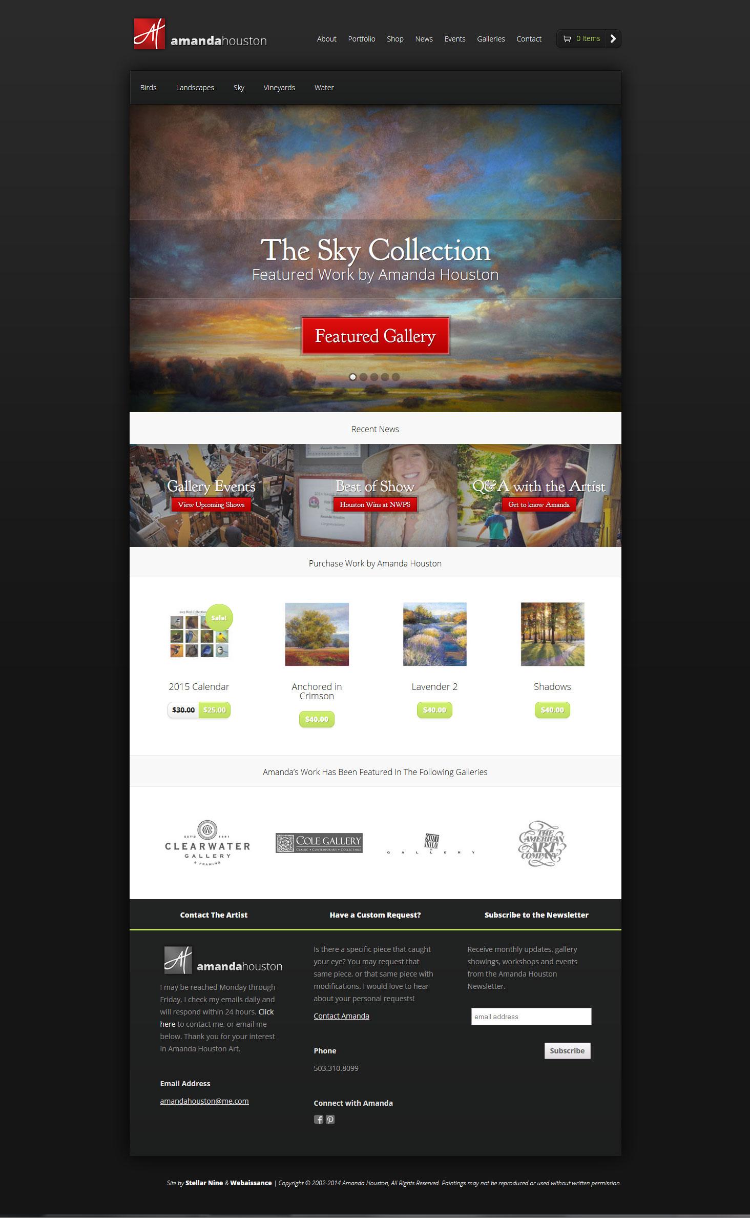 Amanda Houston Fine Art Website