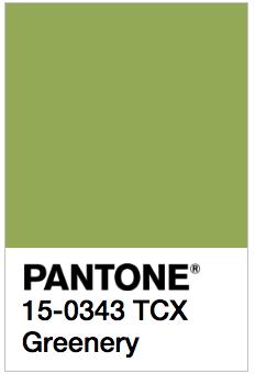 Greenery - Pantone 15-0343 TCX