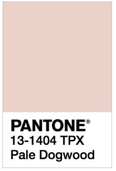 Pale Dogwood - Pantone 13-1404 TPX